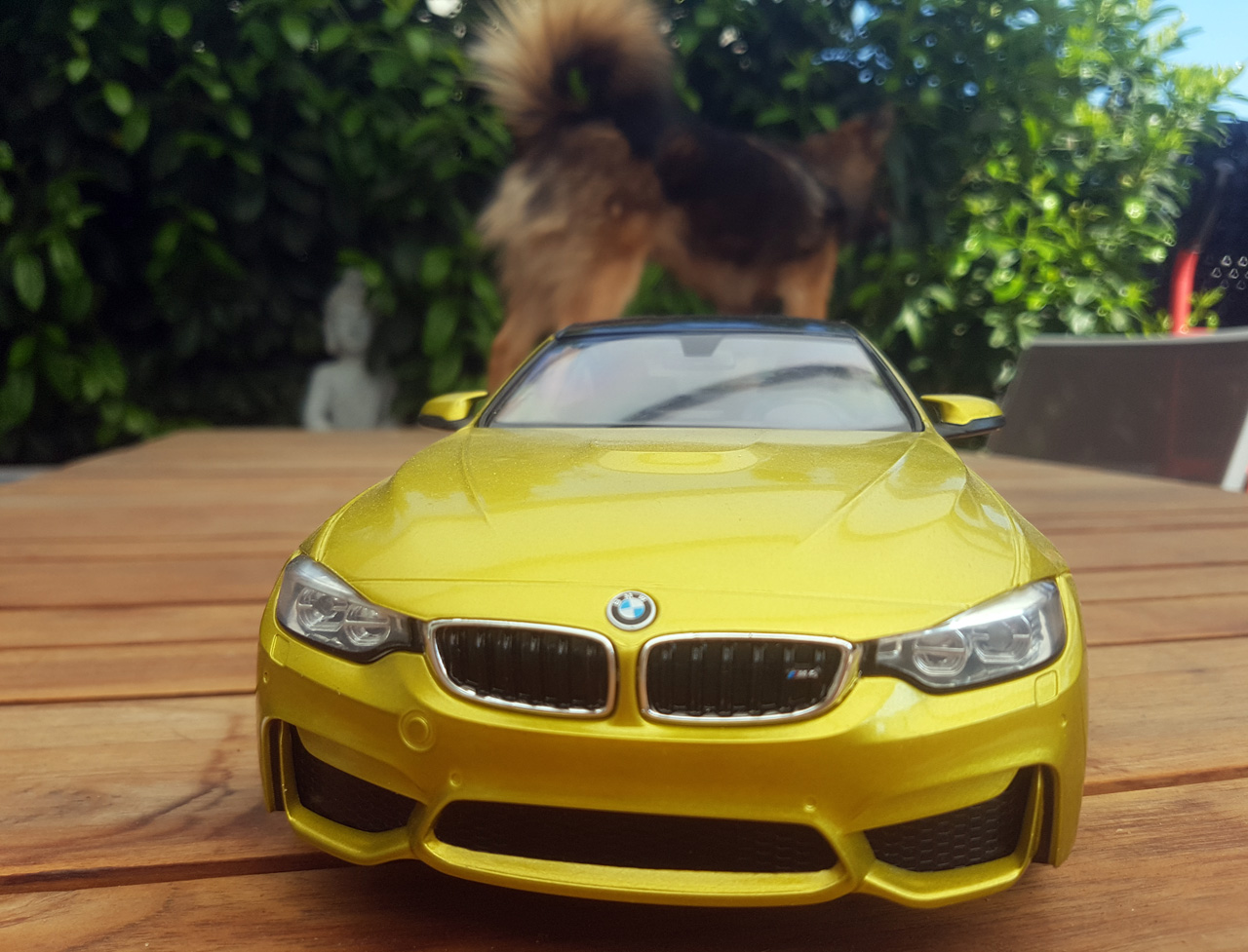 BMW_M4_coupe_5.jpg