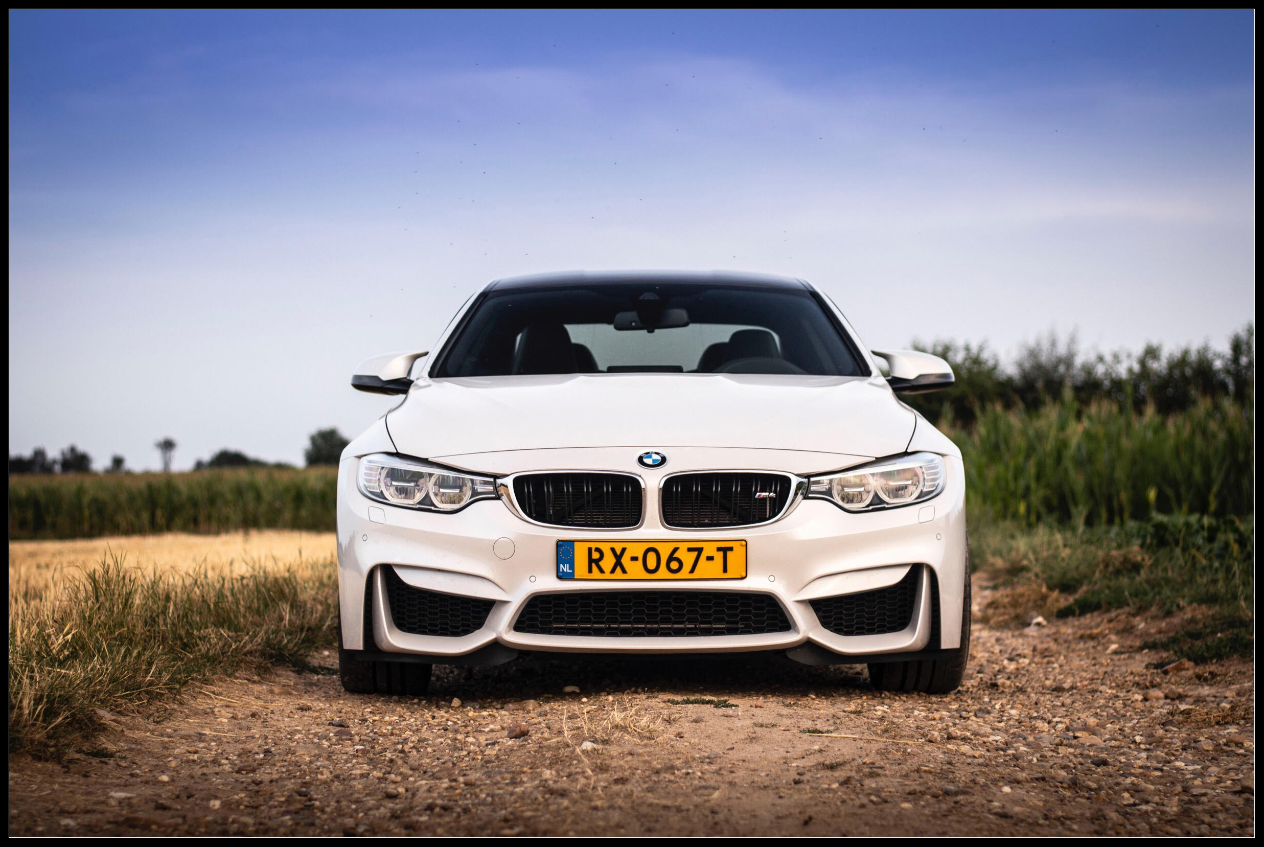 BMW_M4_photoshoot1.jpg