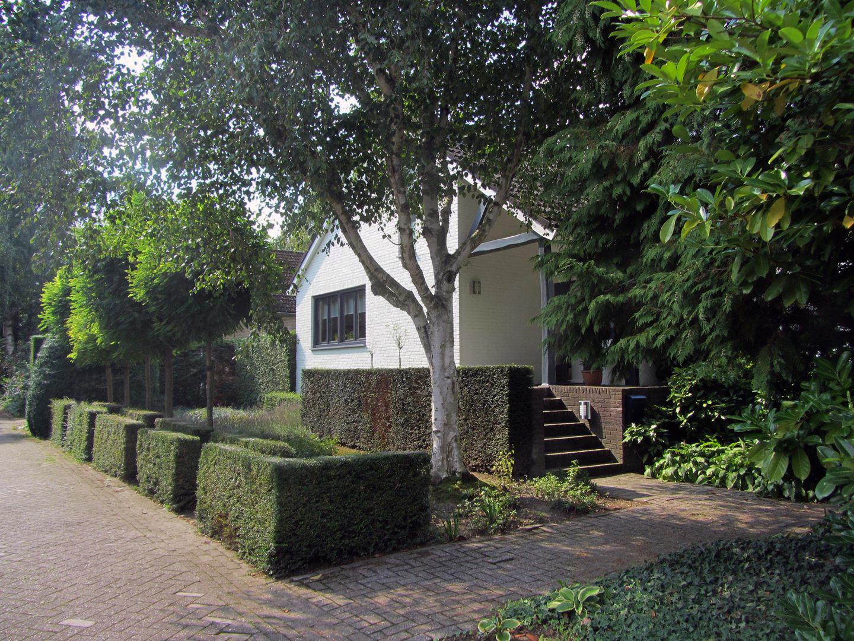 Nieuw_huis_2.jpg