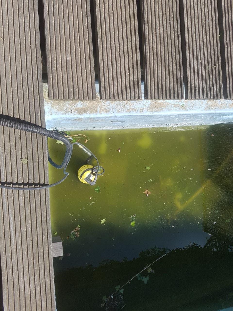 zwembad_leegpompen.jpg