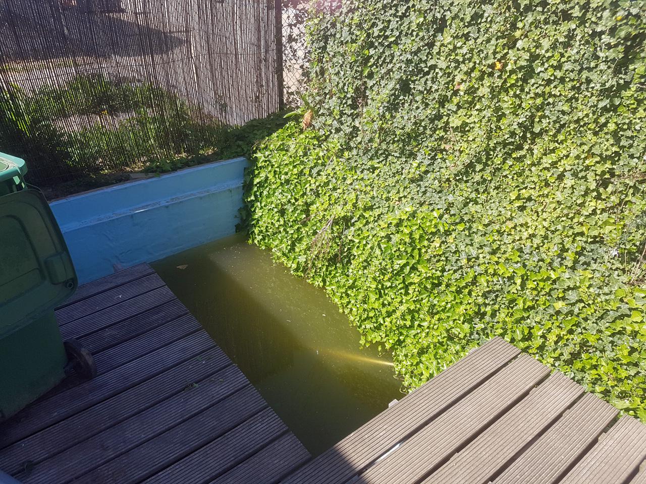 zwembad_vies.jpg